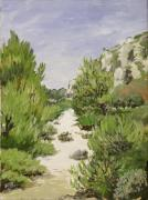 Gerold Kalter - Alpilles close to St....