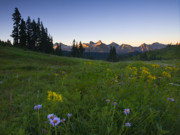 Peaks Photos - Alpine Dawn by Mike  Dawson