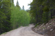 Dirt Roads Photo Originals - Alpine Tunnel Road by Cynthia  Cox Cottam
