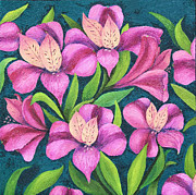 Barbara Nolan - Alstroemeria