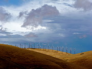 Generators Prints - Altamont Pass California Print by Amelia Racca