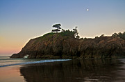 Port Orford Framed Prints - Always By Your Side Framed Print by Marcus Angeline