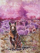 Kelpie Paintings - Always on duty by Zaira Dzhaubaeva