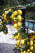 Outdoor Market Posters - Amalfi Coast Lemon Stand Poster by George Oze