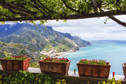 Potted Flowers Prints - Amalfi Coast Vista from Under a Trellis Print by George Oze