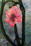 Sign Pastels - Amaryllis of Peace by Emily Michaud