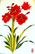Shades Of Red Painting Framed Prints - Amaryllis Red Framed Print by Linda Shearer