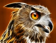 Owl Digital Art Metal Prints - Amazing Owl Portrait Metal Print by Pamela Johnson