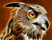 Amazing Owl Portrait Print by Pamela Johnson