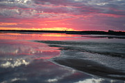 Waterscape Painting Metal Prints - Amazing PEI Sunset Metal Print by Sylvia Luscombe