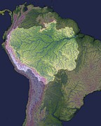 Amazonian Rainforest Prints - Amazon Basin, Satellite Image Print by Nasa