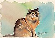Watercolor Cat Paintings - Amber by Arline Wagner