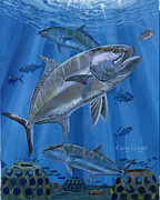 Coral Reef Paintings - Amberjack by Carey Chen