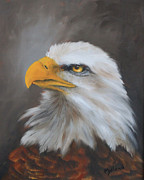 Eagle Paintings - American Bald Eagle Portrait 2 by John Neal Mullican