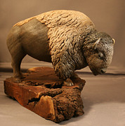 Bison Sculpture Originals - American Bison wood sculpture by Randy Martin