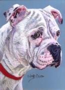 American Bulldog Print by Stephanie Grimes