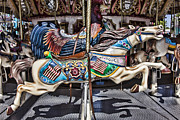 Pony Rides Framed Prints - American Carousel Horse Framed Print by Garry Gay