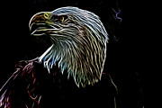 American Eagle Photos - American Eagle by Douglas Barnard