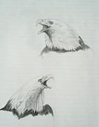 Eagle Drawing Drawings Originals - American Eagles  by Ryan Seate