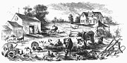 Sheep Farm Prints - AMERICAN FARMYARD, c1870 Print by Granger