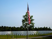 Flag Stones Posters - American Flag at Soldiers Graves Poster by Renee Trenholm