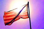 Mick Anderson - American Flag in the Sun