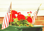 Marian Cates Metal Prints - American Flags And Geraniums Metal Print by Marian Cates