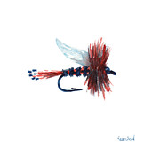 Fishing Paintings - American Fly by Sean Seal