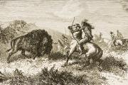 Horse Drawings Photo Prints - American Indians Buffalo Hunting. From Print by Ken Welsh