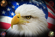 Eagle-eye Metal Prints - American Pride Metal Print by Shane Bechler