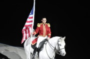 Stallions Digital Art - American Pride by Vijay Sharon Govender