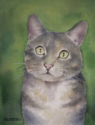 Nursery Room Art Prints Paintings - American Shorthair Cat Malia by Teresa Silvestri