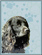 Puppies Digital Art Posters - American Water Spaniel Poster by One Rude Dawg Orcutt