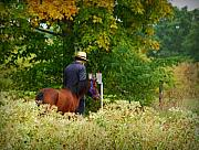 Amish Prints - Amish Autumn Print by Linda Mishler