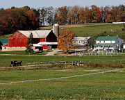 Amish Farms Prints - Amish Autumn Print by Lydia Warner Miller