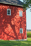 Amish Framed Prints - Amish Barn and Shadows II Framed Print by Suzanne Gaff