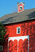 Red Buildings Posters - Amish Barn in Shadows Poster by Suzanne Gaff