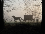 Rural Indiana Posters - Amish Buggy Foggy Sunday Poster by David Arment