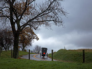 Carriage Road Photos - Amish Buggy by Jeremy Martin