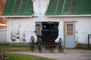 Amish Buggy Photos - Amish Buggy White Barn by David Arment