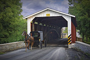 Amish Buggy Photos - Amish Buggy with covered bridge by Randall Nyhof