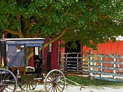 Amish Buggy Photos - Amish Driveway by Joyce L Kimble