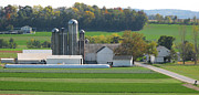 Pennsylvania Dutch Photos - Amish Farm by Jack Schultz