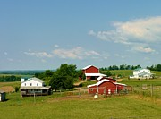 Amish Farms Prints - Amish Farms in Clearfield County PA Print by Jeanette Oberholtzer