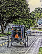 Horse Buggy Posters - Amish Girl Poster by Madeline Ellis