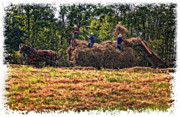 Amish Prints - Amish Harvest vignette Print by Steve Harrington