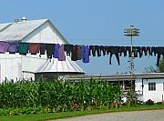 Amish Prints - Amish Laundry Print by Lori Seaman