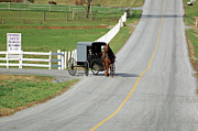 Amish Farms Prints - Amish Life Print by Joyce Huhra