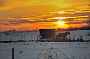 Horse And Buggy Prints - Amish Sunset Print by David Arment