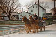 Horse And Cart Posters - Amish Wagon Poster by Heidi Reyher